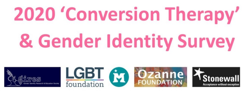 gender idenity survey