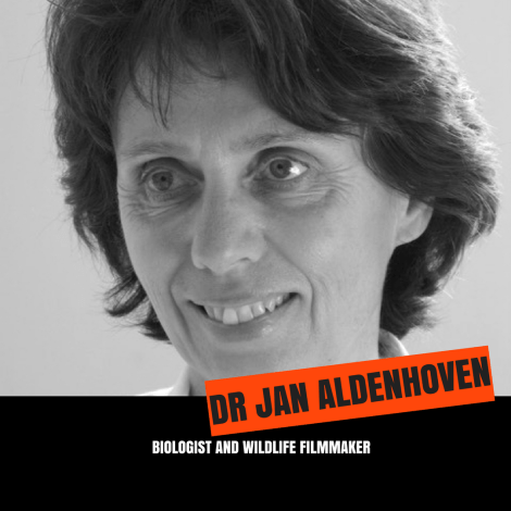 JAN ALDENHOVEN – Copy