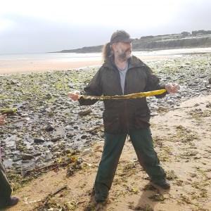 Tony Wilson showing a Sugar Kelp