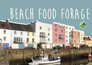 Beach Food Forage 2019 @ Meet at St Andrews Sailing Club