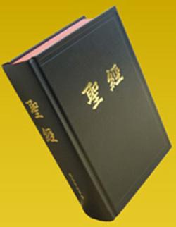 聖經中文翻譯 常用譯本