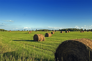 कई यूरोपीय देशों और इंडोनेशिया में, भूमि भूखंडों को अराख में मापा जाता है