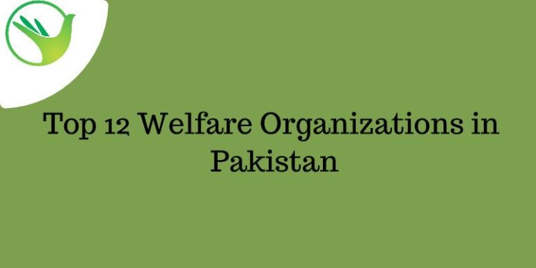 Top 12 Welfare Organizations in Pakistan - sm