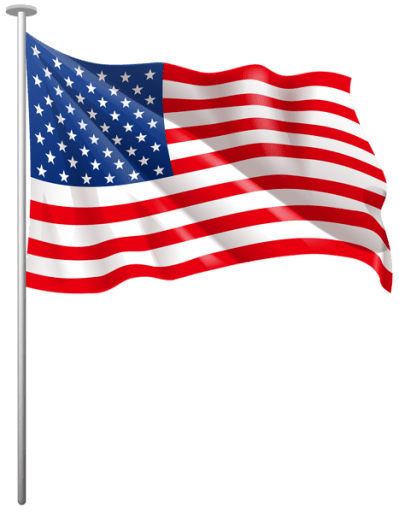 Image result for small us flag icon