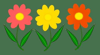 download flowers vectors free