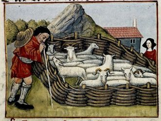 Medieval Sheep Farmer