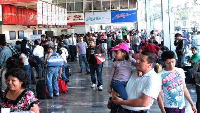 Photo of Por cada boleto de avión se venden 12 boletos de autobús
