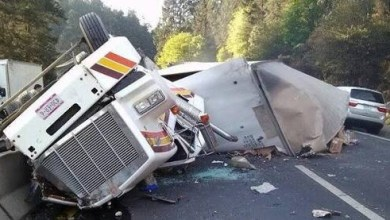 Photo of Descienden 20% muertes en carreteras: Capufe