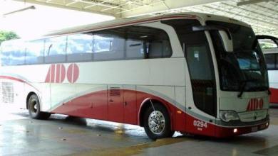 Photo of Buscan acciones ante el acoso sexual en autobuses ADO