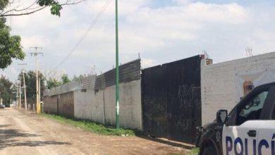 Photo of Buscaban 2 tractocamiones; encuentran 29 vehículos