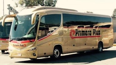 Photo of Primera Plus se equipará con i8 de Irizar