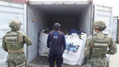 Photo of Incineran cargamento de madera en Manzanillo por plaga