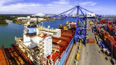 Photo of Puerto de Altamira invertirá más de 150 MDD en infraestructura.