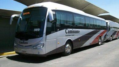 Photo of Estas líneas de autobuses aumentarán pasaje por alza en autopistas