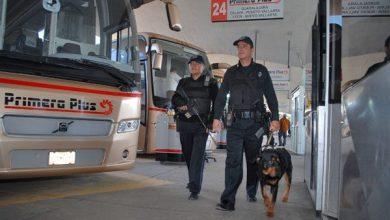 Photo of Modifican ley para garantizar seguridad a pasajeros de autobuses