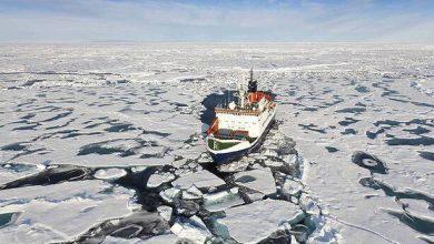 Photo of Maersk intentará transportar a través del Ártico