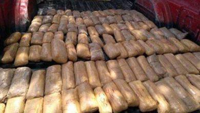 Photo of Detectan 70 kilos de metanfetaminas en empresa de paquetería