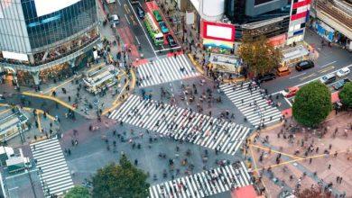 Photo of Se inspiran en Tokio para cruceros en la CDMX