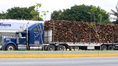 Photo of Se ampararán transportistas por restricción de circulación en Jalisco