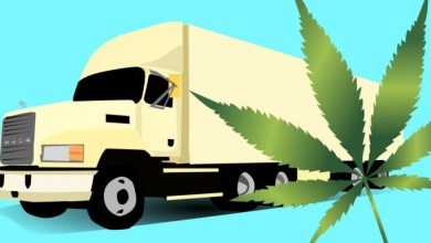 Photo of ¿Cómo se transporta la marihuana legal en Estados Unidos?