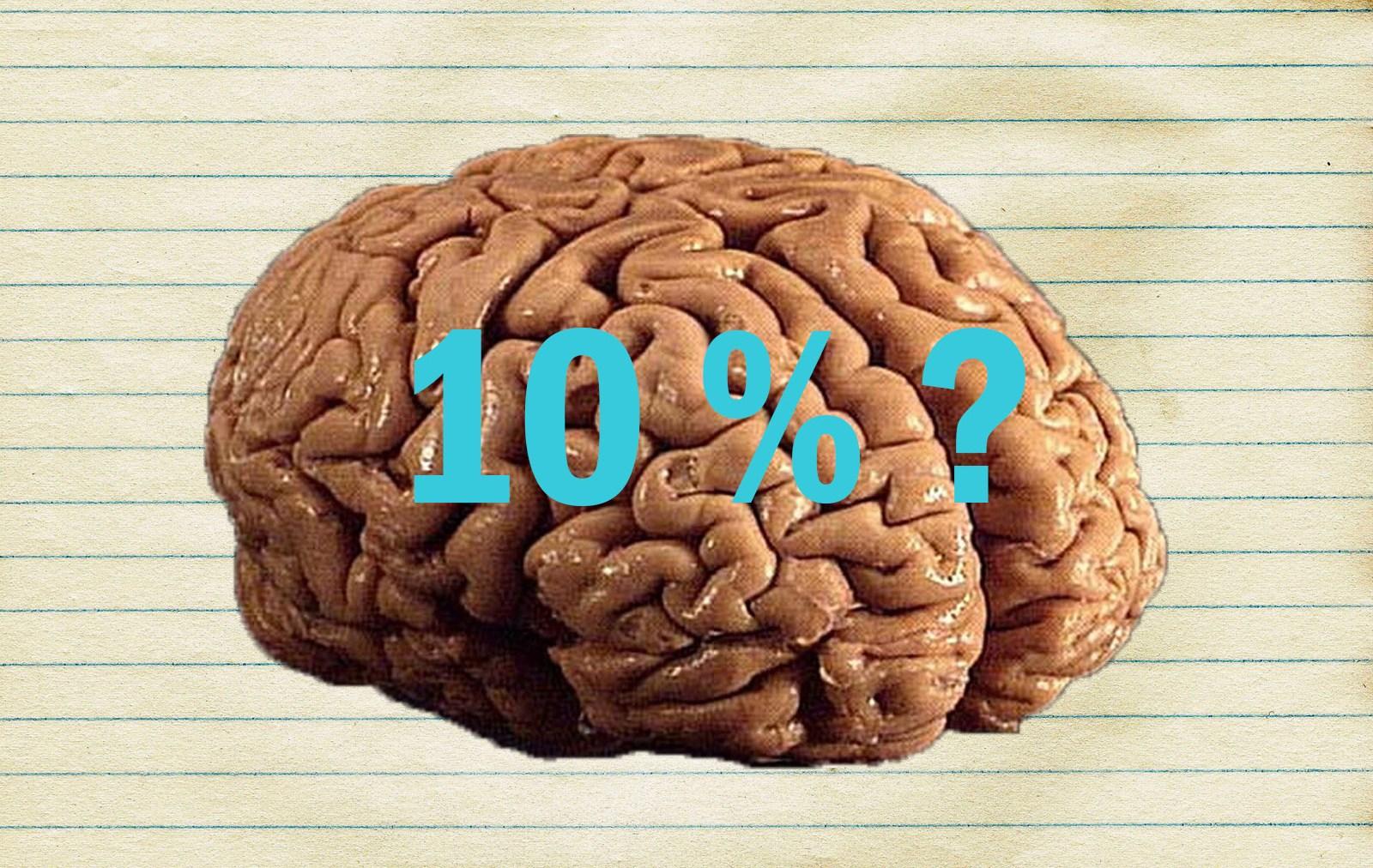 Apie 10-ies % smegenų panaudojimą