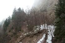 piatra-craiului_3