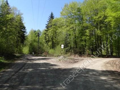 intersectie-drumul-forestier-ursoaia