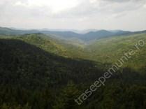 muntii-obcinele-bucovinene