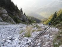 Valcel-de-gohotis-in-Piatra-Craiului