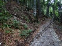 Drum pavat pe munte