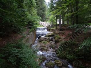 Valea Pelesului