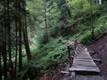 Valea Seaca _ pod