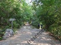 Drum spre Cantonul Damian