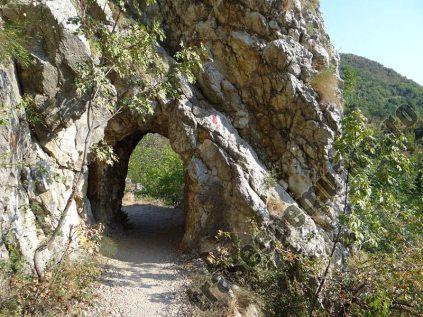 Carsia Foeroaga Mare_tunel
