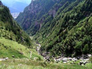 Valea Jepii Mici