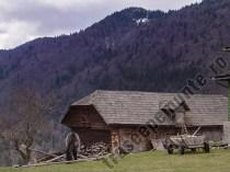 Iapa si manz - satul Pestera