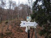 Marcaj turistic Muntii Ciucas_3