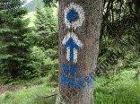 Muntii Rarau-marcaj punct albastru