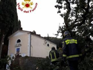 Maltempo, cade la quercia del pentimento a Castiglion, intatta chiesa