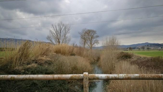 """Peltristo incalza la Regione sul rischio idrogeologico: """"vogliamo la manutenzione del Nestore"""""""
