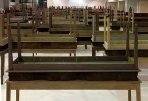 Plegaria muda. Instalación Madera, componente mineral, cemento y pasto. Dimensiones variables 2008-2010 http://culturacolectiva.com/doris-salcedo-la-artista-del-tercer-mundo/