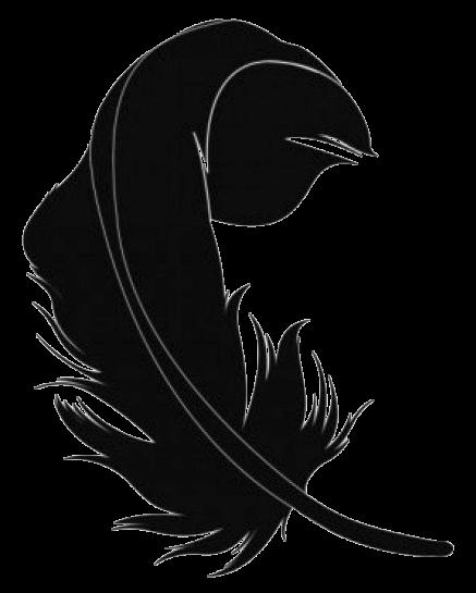 Feather | piuma d'alpino