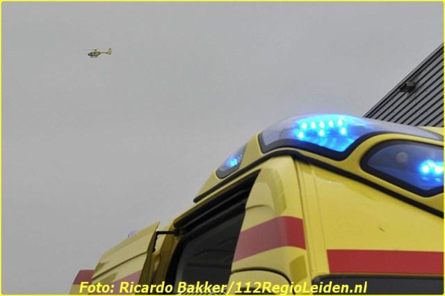 RIC_3100-BorderMaker