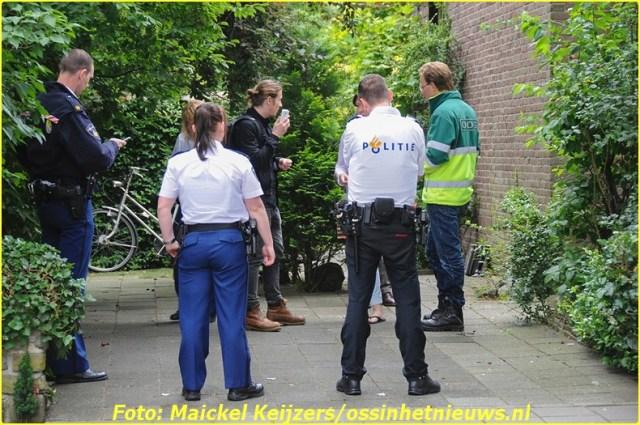 2014 06 19 oss (5)-BorderMaker