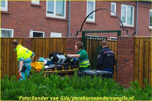 2014 07 09 denbosch2 (3)-BorderMaker