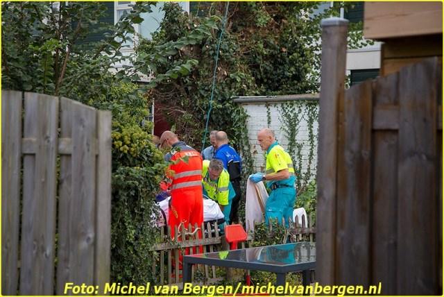 20140923_tulpen_01-BorderMaker