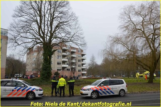 2015 02 24 Val uit boom Stadskanaal (1)-BorderMaker