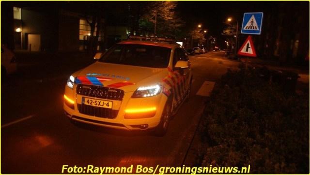 raymondbosgron (3)-BorderMaker