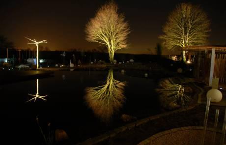 Lichtspiel Garten