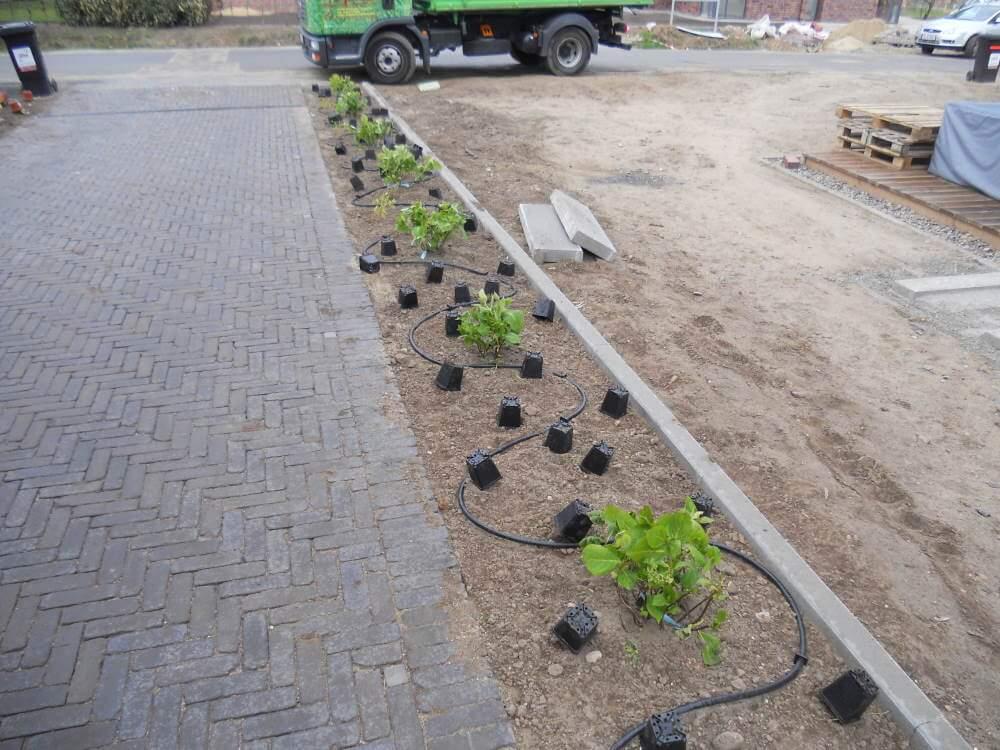Kleine und schmale Pflanzflächen werden mit einem Tropfschlauch bewässert